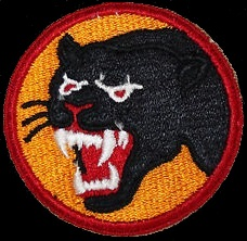 Black Panther Patch